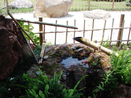 Los 3 jardines estilo japonés que puedes visitar hoy mismo en Costa Rica (III)