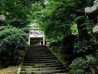 4 linternas japonesas ideales para decorar tu jardín