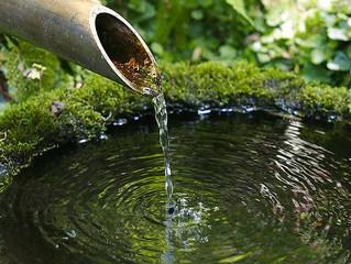 El ritual de la purificación del alma, el Tsukubai japonés.