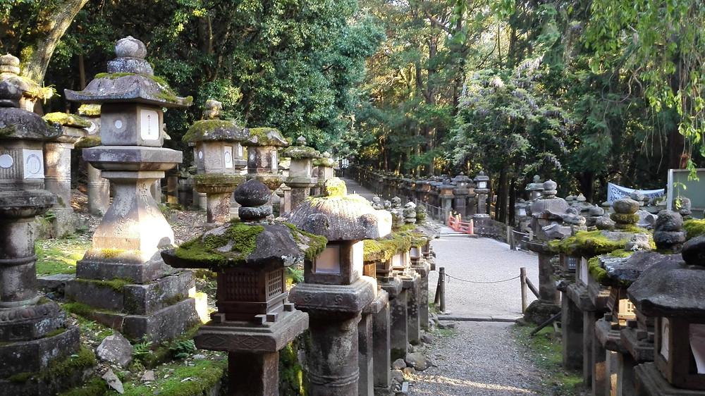 santuario Kasuga