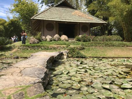 Los 3 jardines estilo japones que puedes visitar hoy mismo en Costa Rica (1er parte)