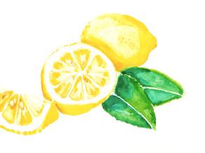 Pépin : Le Citron pousse ou le vent le mène, Librement.