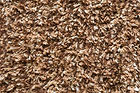 Cotton-Superior-Brown.jpg