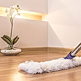 sweeping.jpg