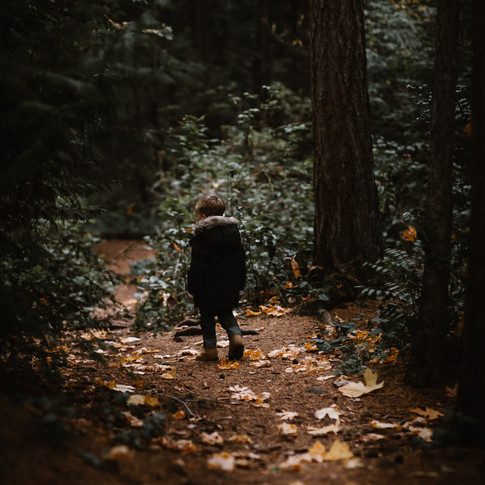 a small child walking on a trail in the woods.