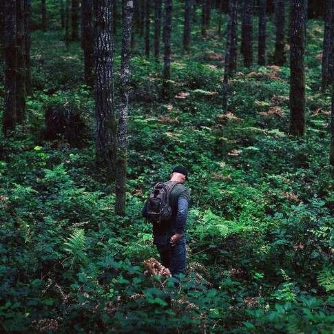 landscape image of a male walking in the woods.