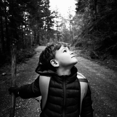 a black and white portrait of a kid in the woods looking up into the trees.