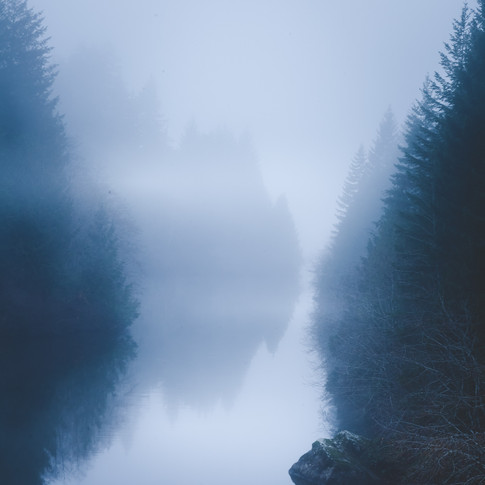 portrait of a misty river surrounded by trees and rocks.