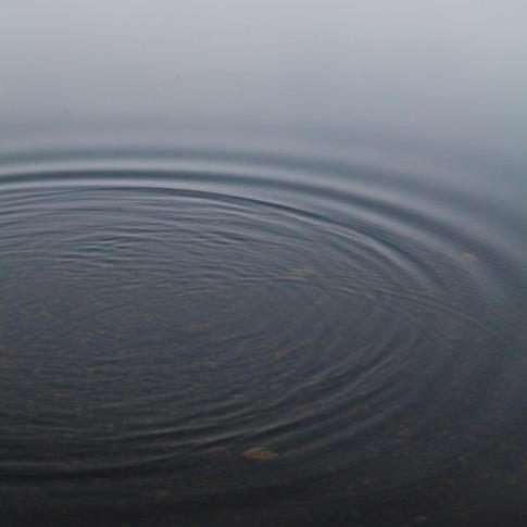 portrait of a ripple in still water.