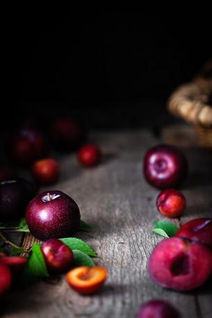 EVI Current Cravings- Fall 2020 [Plum Sh