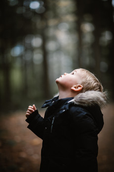 a photo of a child looking up into the trees.