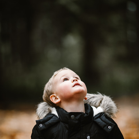 a small child looking up in the woods with fall leaves on the ground.