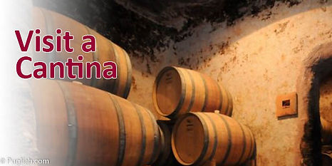 Ting at lave i Puglia, den bedste mad i Puglia, Cykling Puglia, Vandring Puglia, Walking Puglia, strande Puglia, Puglia vin, olivenolie smagning, vinsmagning Puglia, markedsdage Puglia, museer Puglia, oliventræer, skjulte strande, leje landejendom apulien, sommerhus til leje, sommerhus leje apulien, puglia, alberobello, trulli, villa trullo, puglia italy, agriturismo, feriehus puglia, ferie hus apulien, ferie hus italien, ferielejlighed italien