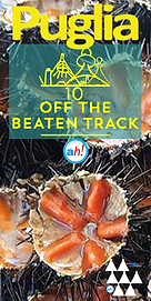 10 Off Beaten Track PORTRAIT.png