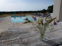Privater Pool - 8 x 5 m für Ihre ausschließliche Nutzung