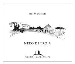 Cantina, Carpentiere, Nero di Troia, wine tasting puglia, pugia wine