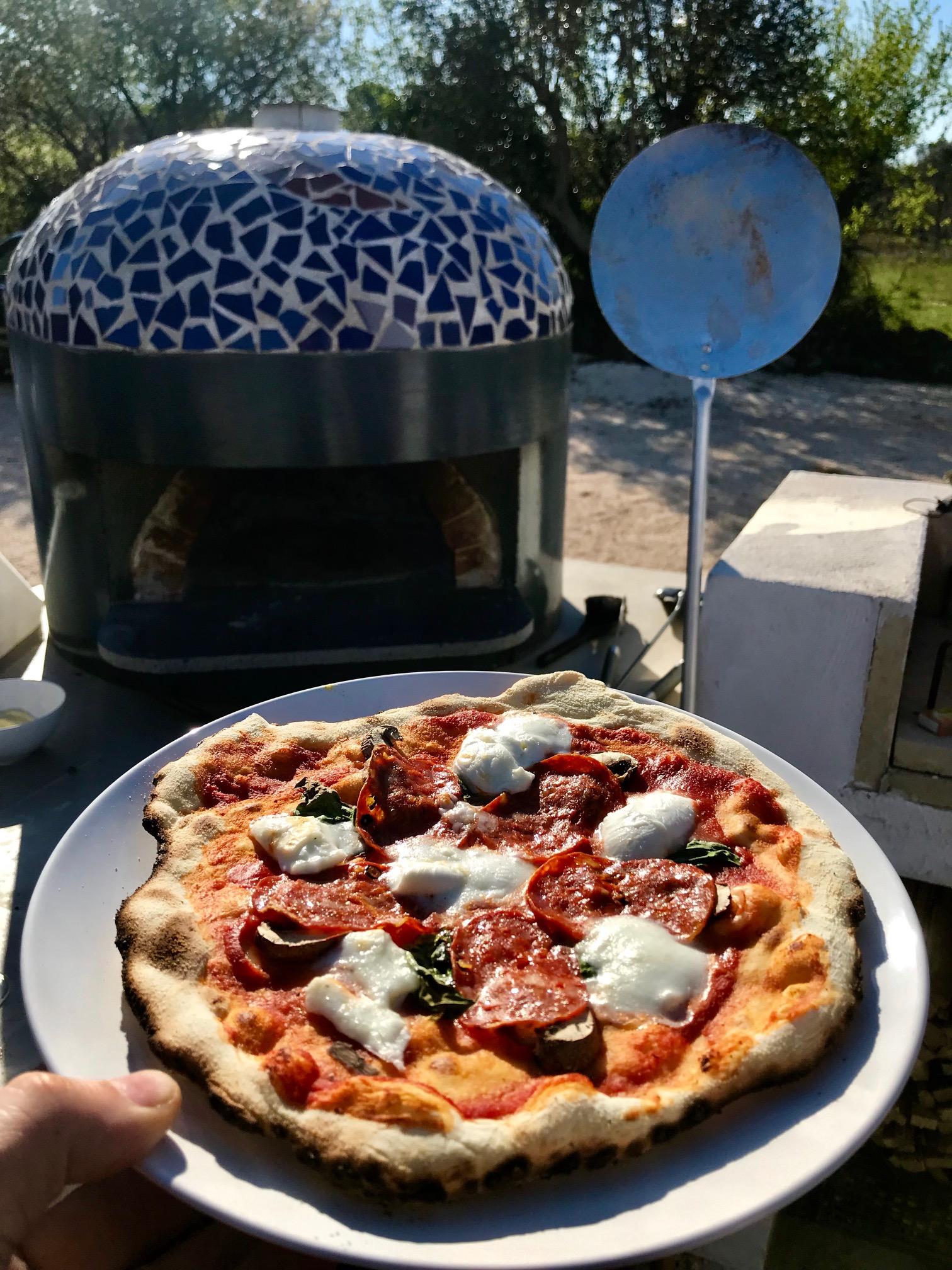 Four à pizza au bois