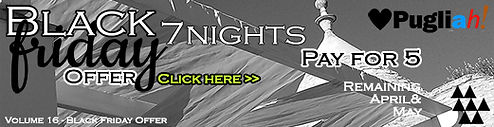BANNER Black Friday CLICK HERE SMALL.jpg