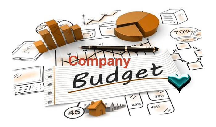 How to Control Your Company Budget