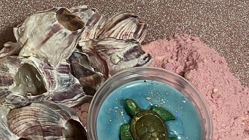 Sheldon the turtle- Wax Melt Pot