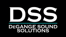 dss_logo_screen.png