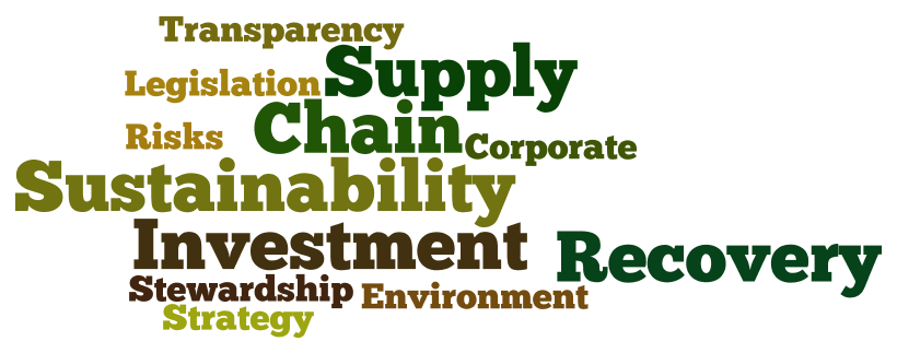 word-cloud-veracity-sustainability-investment-recovery.png