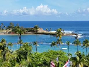 Puerto Rico Passes 100% Renewable Energy Legislation
