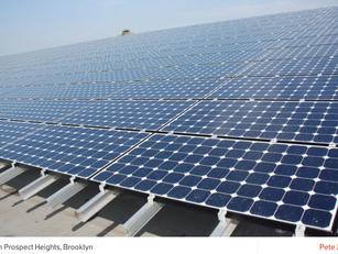 Solar Panels Lead NYCHA's Sustainability Agenda