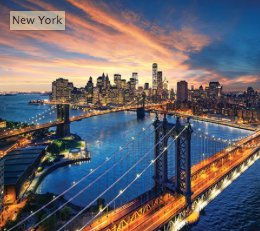 New York's housing authority champions on-site solar