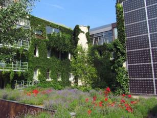Hotels Embrace Sustainability