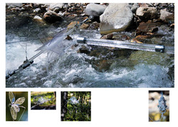 Moulin hydro erwan sito 2
