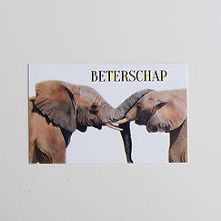 Olifanten beterschap.jpg