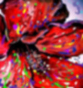 Red and Purple Poppy.24x24.jpg