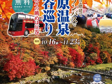 めいぷるスカイ号オープンバス運行中