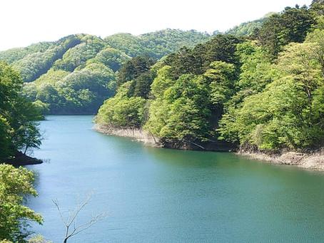 新緑真っ只中の回顧りの滝