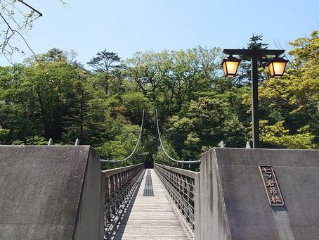 新緑真っ只中の七つ岩吊り橋