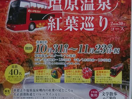 2階建てオープンバスで紅葉めぐり