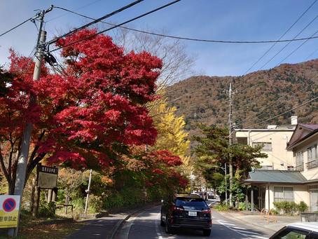 紅葉の中の福渡散歩