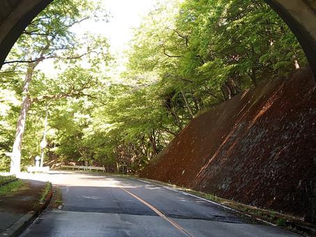 新緑真っ只中の大正浪漫街道