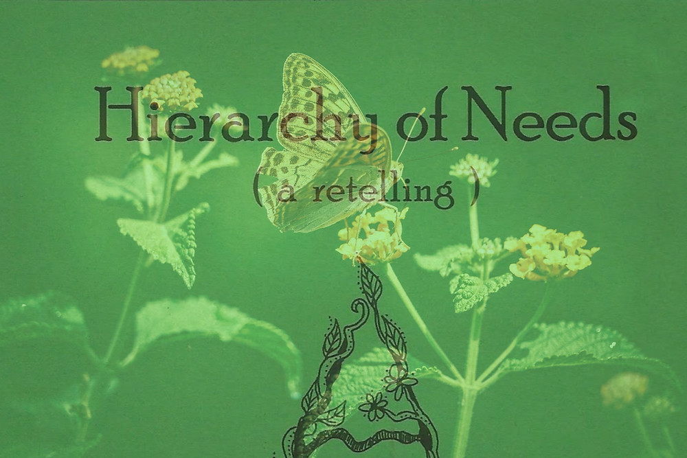 Poetry Review |' Hierarchy of Needs' by Charley Barnes & Claire Walker | Margaret Adkins Writing