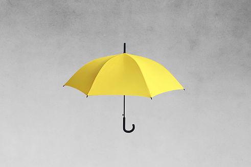 TDC_SS_Insurance_Umbrella_WIX_Header.jpg
