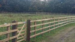 Post Rail -gate posts & gate