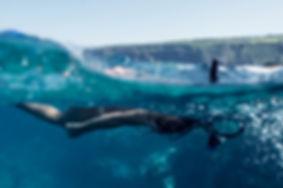 Randonnée palmée dans les eaux cristalines des piscines naturelles du Cap Camarat. Centre de plongée nichée au coeur de la pinède de Ramatuelle. Au départ de la plage de Pampelonne. Le rdv a lieu dans notre centre soit à 9h00 pour les plus matinaux soit à 14h00 pour ceux qui aiment un soleil plus généreux. On y effectue la distribution du matériel : combinaisons, palmes, masques et tubas (masque facial pour les tout-débutants).  Petit briefing sur la sécurité et l'utilisation du matériel. Départ pour l'embarcation qui se trouve sur la plage de Pampelonne. On y accède par un petit chemin piéton qui passe dans la pinède (5mn pour rejoindre la plage). Départ en bateau pour rejoindre les contre-forts du Cap Camarat qui abrite une multitude de petites criques naturelles (10mn de navigation au maximum). Les lieux sont protégés du trafic maritime et les eaux y sont très claires. Petit briefing sur la faune et la flore locale en fonction des différents biotopes rencontrés. Mise à l'eau en douc