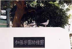 鳩オブジェ