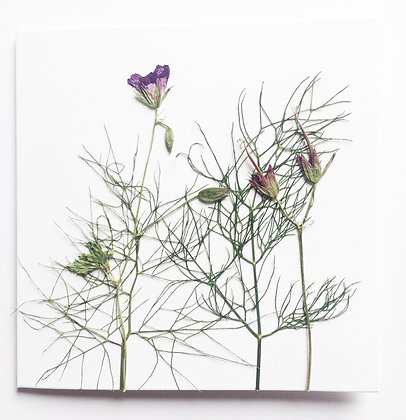Pressed Flower Card - Fennel and Flowers