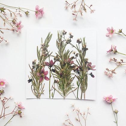 Summer Pressed Flower Card
