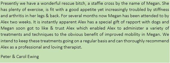 Megan Ewing Testimonial.jpg
