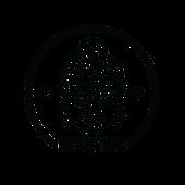 MicBraining Neon Light Series