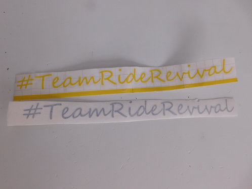 Small #TeamRideRevvial Stickers