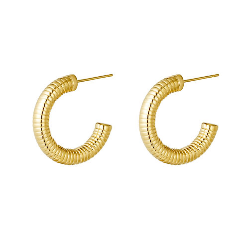 Earrings hoops Spring